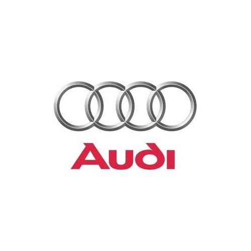 Rimappatura Audi