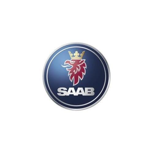 Rimappatura Saab