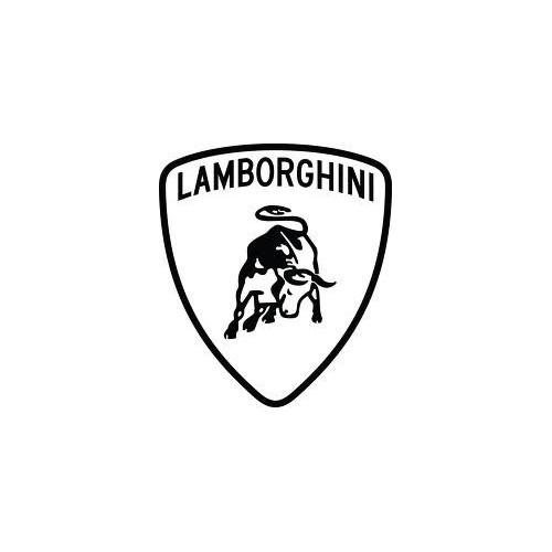 Rimappatura Lamborghini
