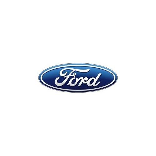 Rimappatura Ford